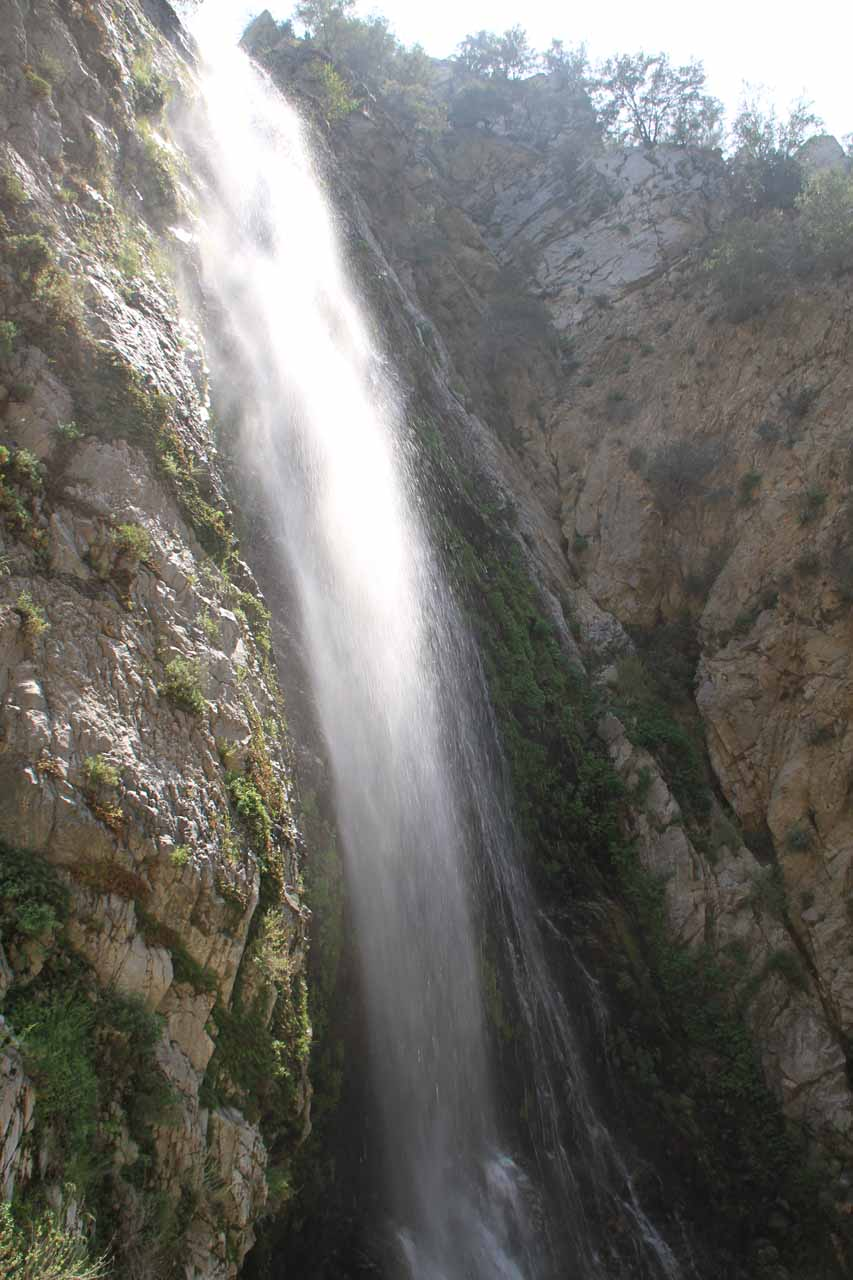 Looking up towards the top of Bonita Falls against the sun from its left side