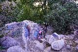 Bonita_Falls_045_01182021 - Looking back down at Julie and Tahia making their way up towards Bonita Falls while flanked by defaced rocks