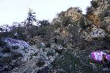 Bonita_Falls_070_01182021 - Looking up at some people looking to scale more cliffs above Bonita Falls