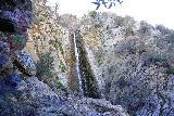 Bonita_Falls_071_01182021 - Looking up at the context of the graffiti-laced rocks and a partial view of Bonita Falls