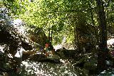 Bonita_Falls_073_06122020 - Tahia and Julie continuing to approach the base of Bonita Falls at the end