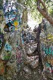 Bonita_Falls_164_06122020 - Looking at the graffiti in a narrow notch near the top down look at Bonita Falls
