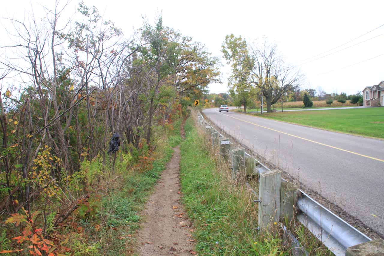 After having my fill of Borer's Falls, I had to walk back along the Escarpment Trail followed along the Rock Chapel Road