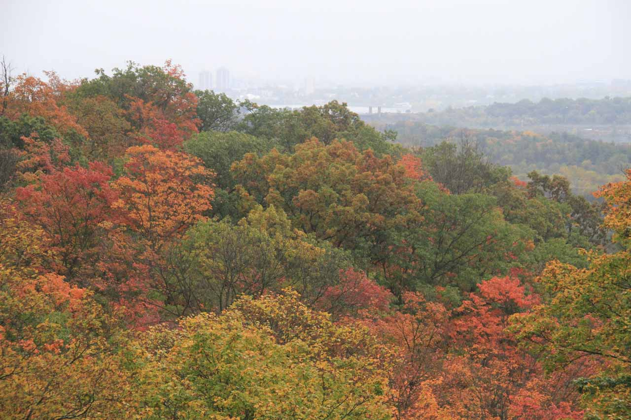Looking over the beautiful Autumn colors in the rain towards the Greater Hamilton area
