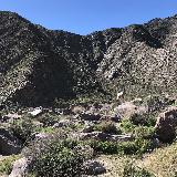 Borrego_Palm_Canyon_011_jx_02092019