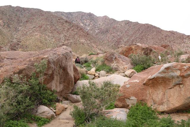 Borrego_Palm_Canyon_046_02092019 - Julie hiking amongst large boulders (some with red stains on them) as the Borrego Palm Canyon Trail started to undulate as the canyon closed in