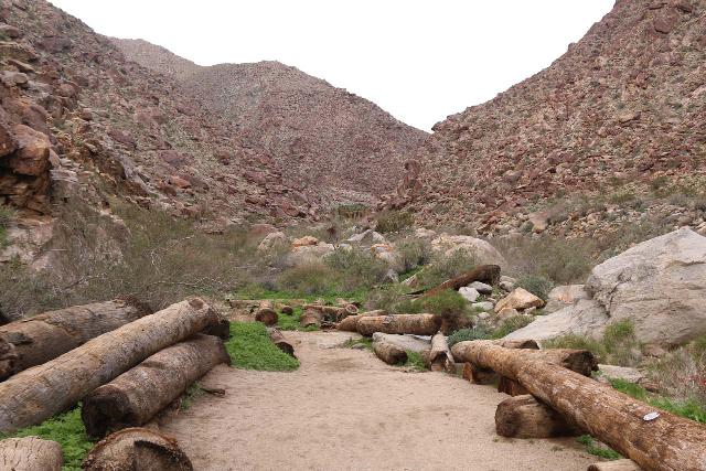 Borrego_Palm_Canyon_074_02092019 - Downed California Fan Palm Trees re-purposes as trail barricades along the Borrego Palm Canyon Trail