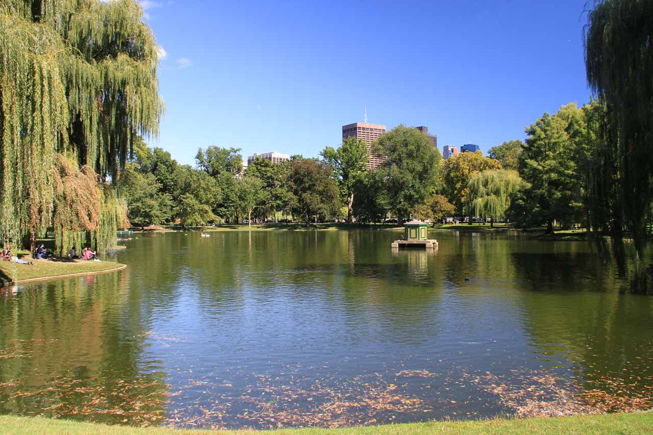 The pond within the Boston Public Garden
