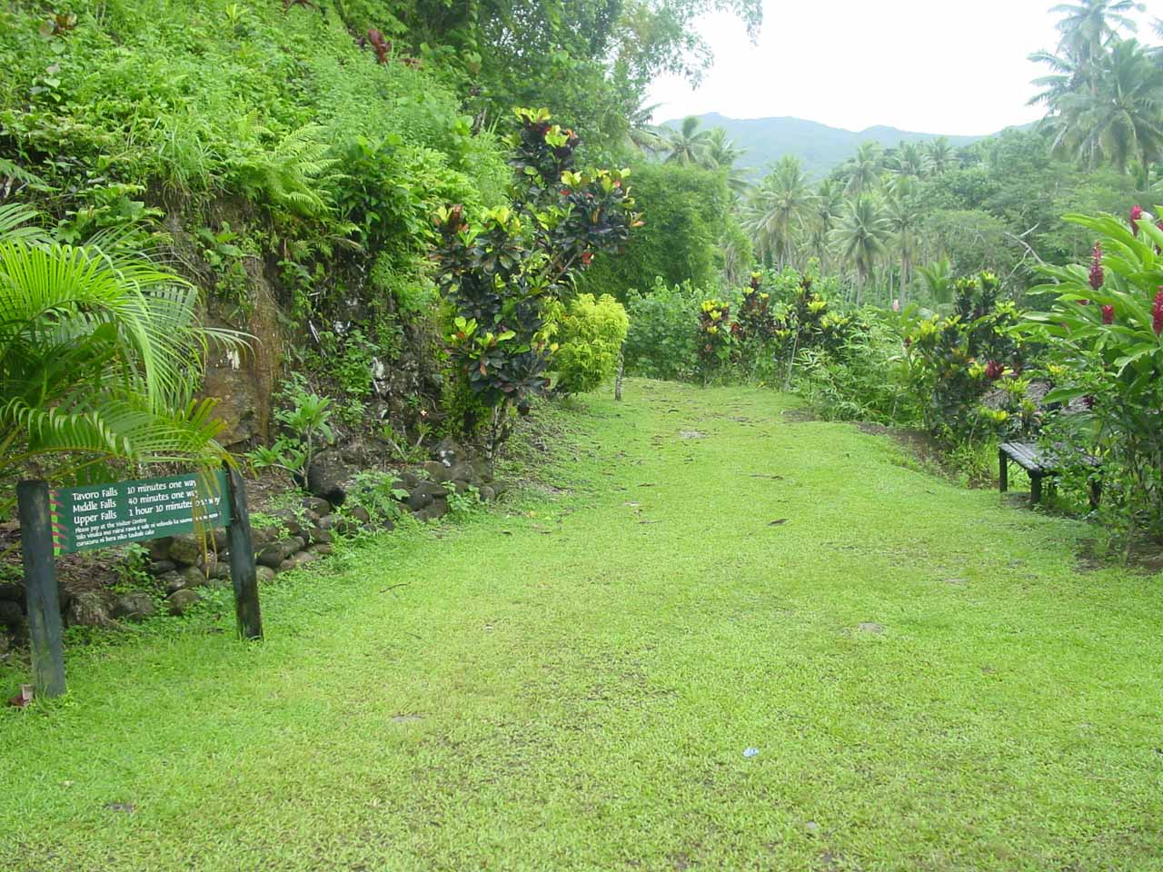 The grassy trail at the trailhead