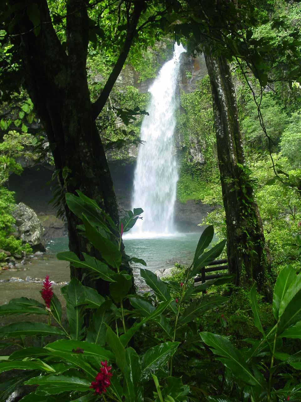 At the Lower Tavoro Falls