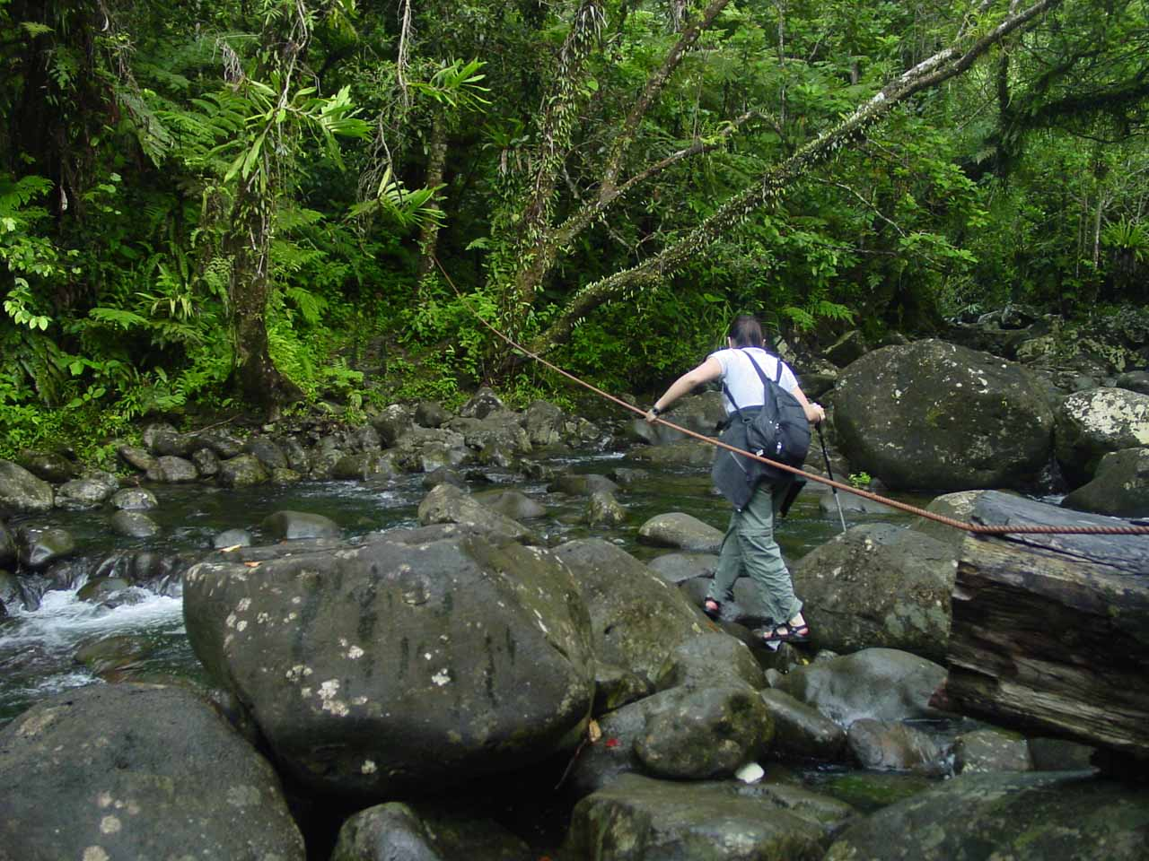 Julie traverses one of the rope-assisted stream crossings