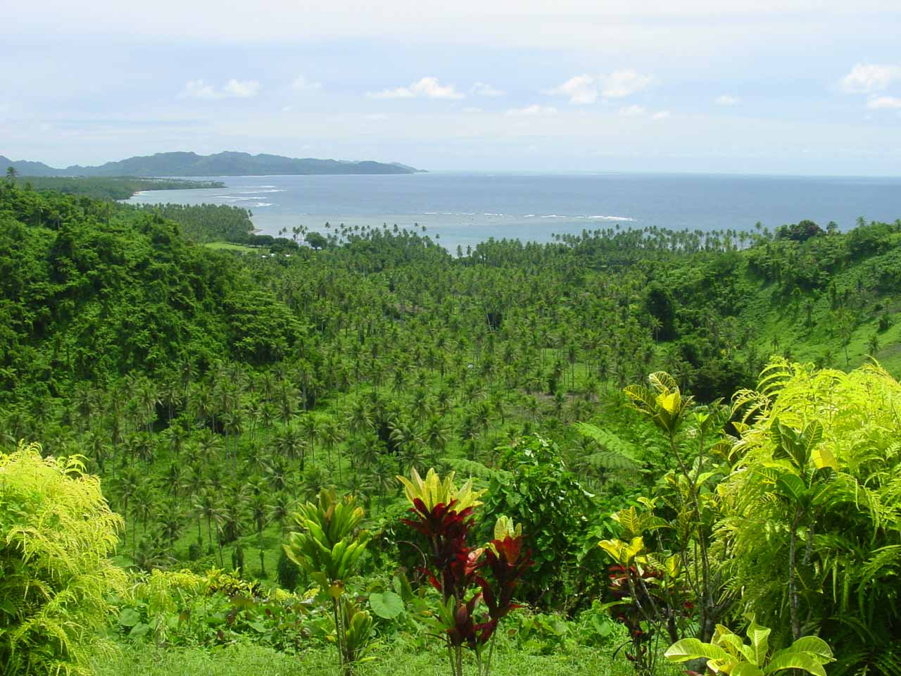 We got this gorgeous view towards the Taveuni eastern coast from somewhere between the Lower and Middle Tavoro Falls