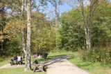Brandywine_Falls_003_10042015 - The picnic area by the car park for Brandywine Falls