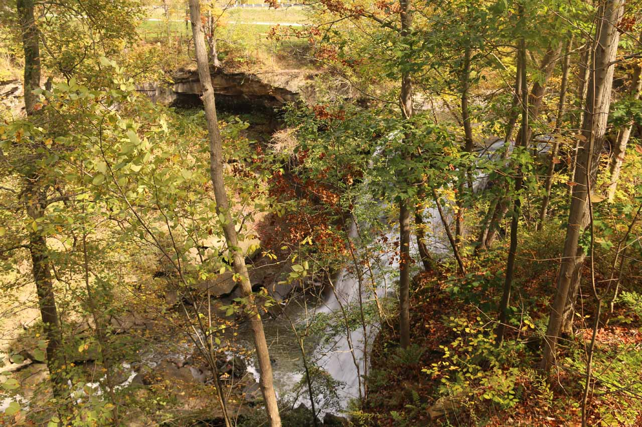 This was the obstructed view of Brandywine Falls from the lookout platform on the upper walkway, which was wheelchair-accessible