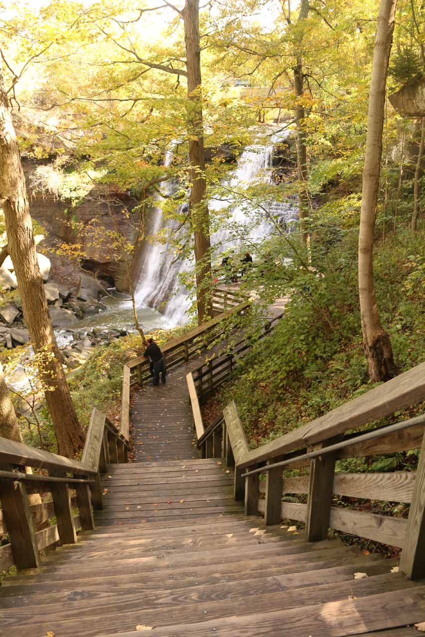 Descending the last series of steps before reaching the lookout platform right in front of Brandywine Falls
