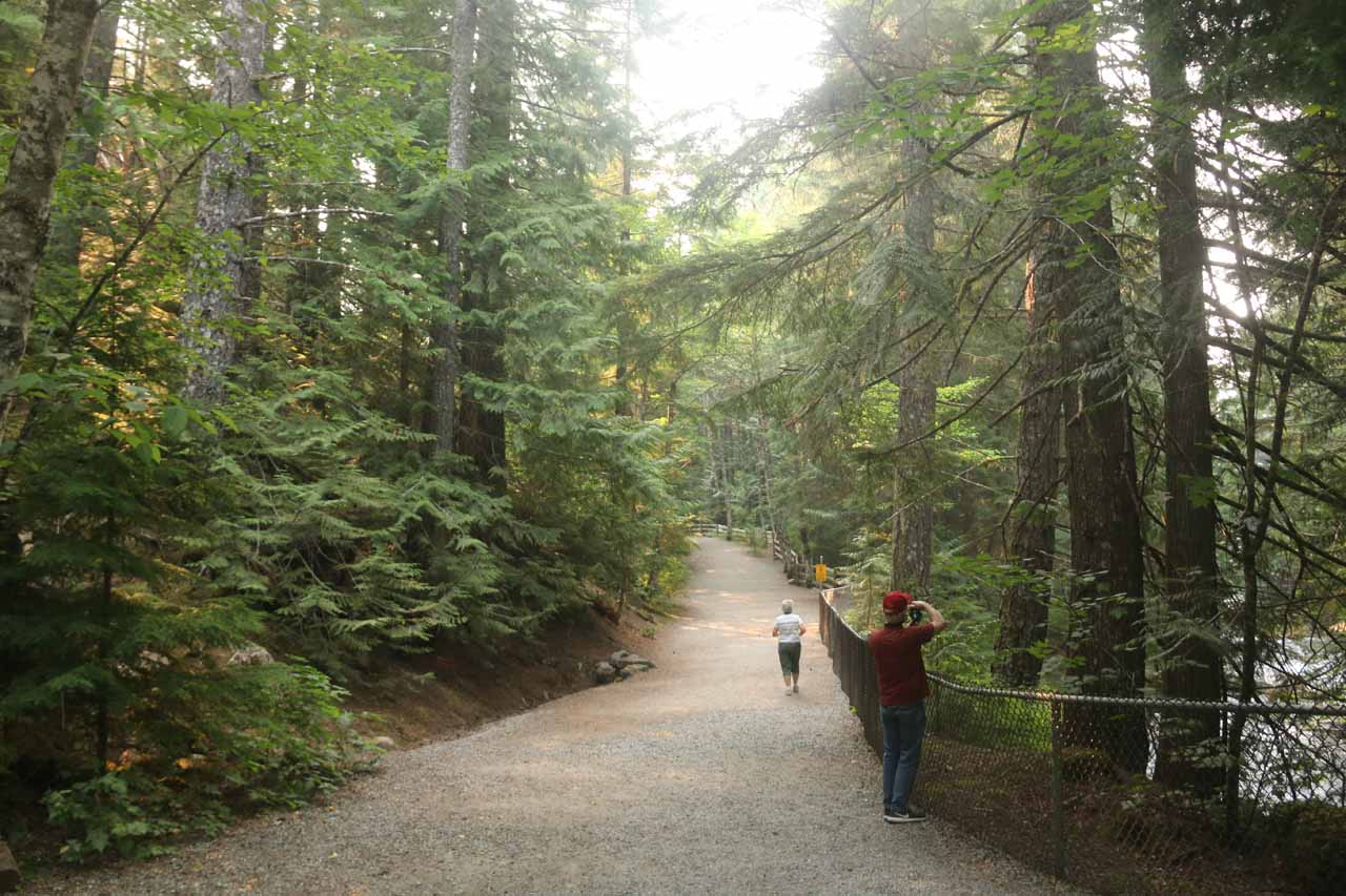 The path to Brandywine Falls was pretty wide and well-used