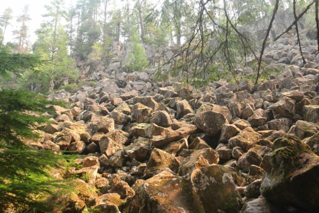 Brandywine_Falls_BC_027_08012017 - Looking up at a large sloping field of volcanic boulders on the short walk to Brandywine Falls
