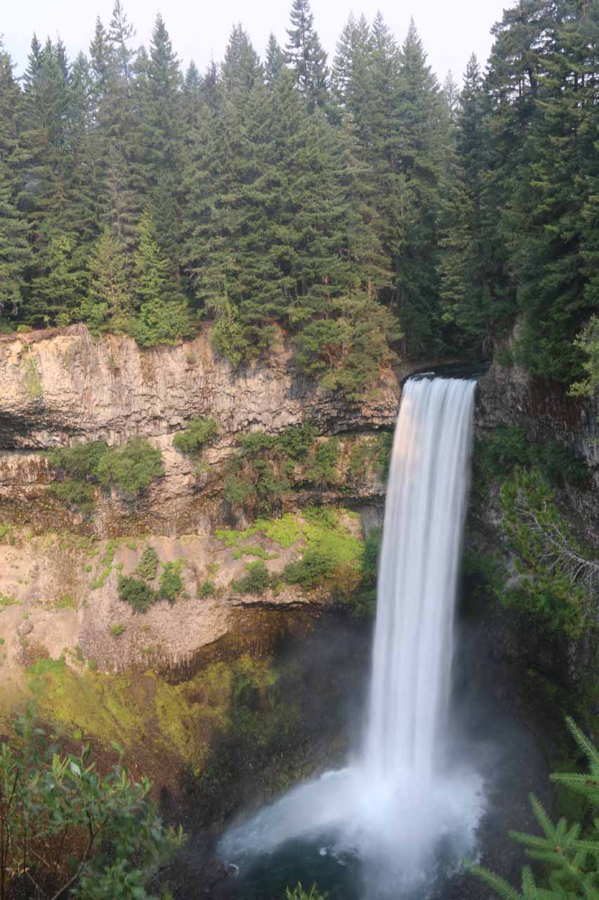 Portrait view of Brandywine Falls showcasing the trees above it for a sense of scale