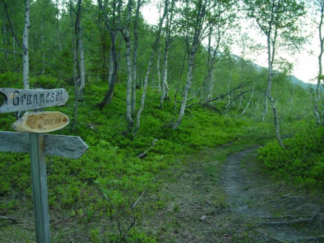 Bredekfossen_005_07052005 - Signed trail junction near Granneset as seen on my first visit back in early July 2005