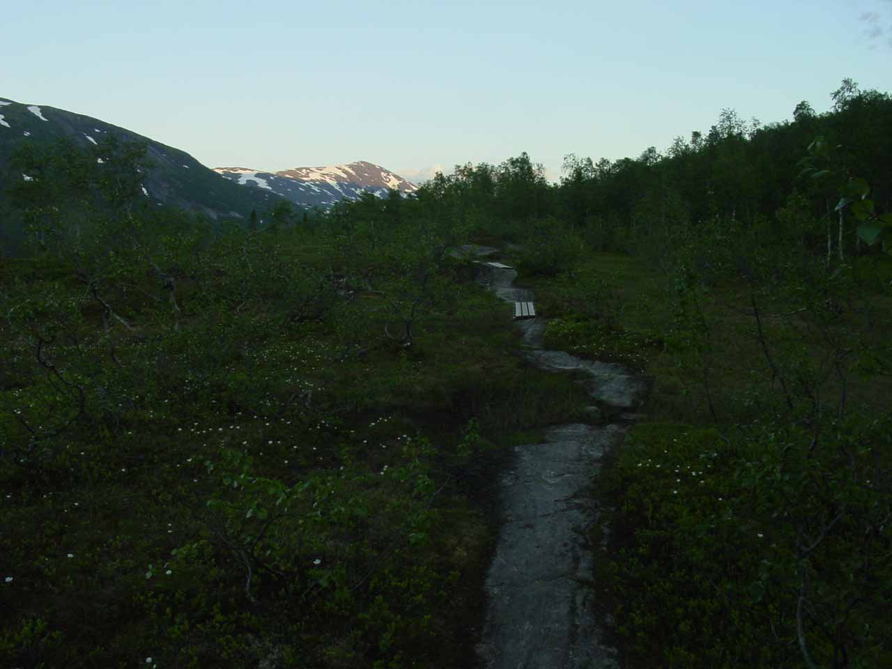 The trail as it started to get dark as I was returning to the trailhead at nearly 11pm