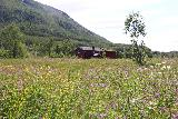 Bredekfossen_349_07092019 - Looking across a field of wildflowers towards the private farm that allowed access to Svartisen-Saltfjellet National Park via Stormdalshei