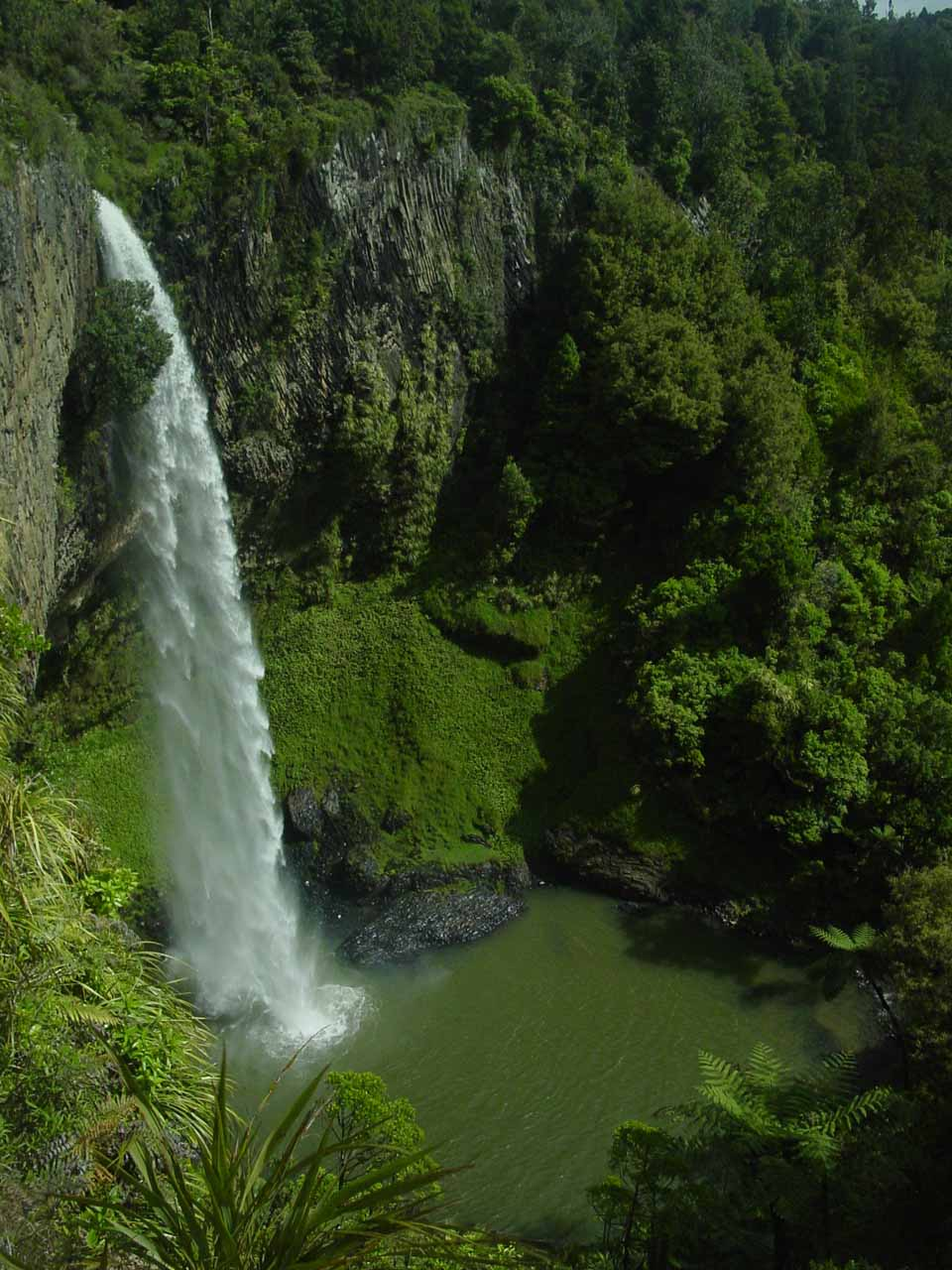 Bridal Veil Falls near Raglan