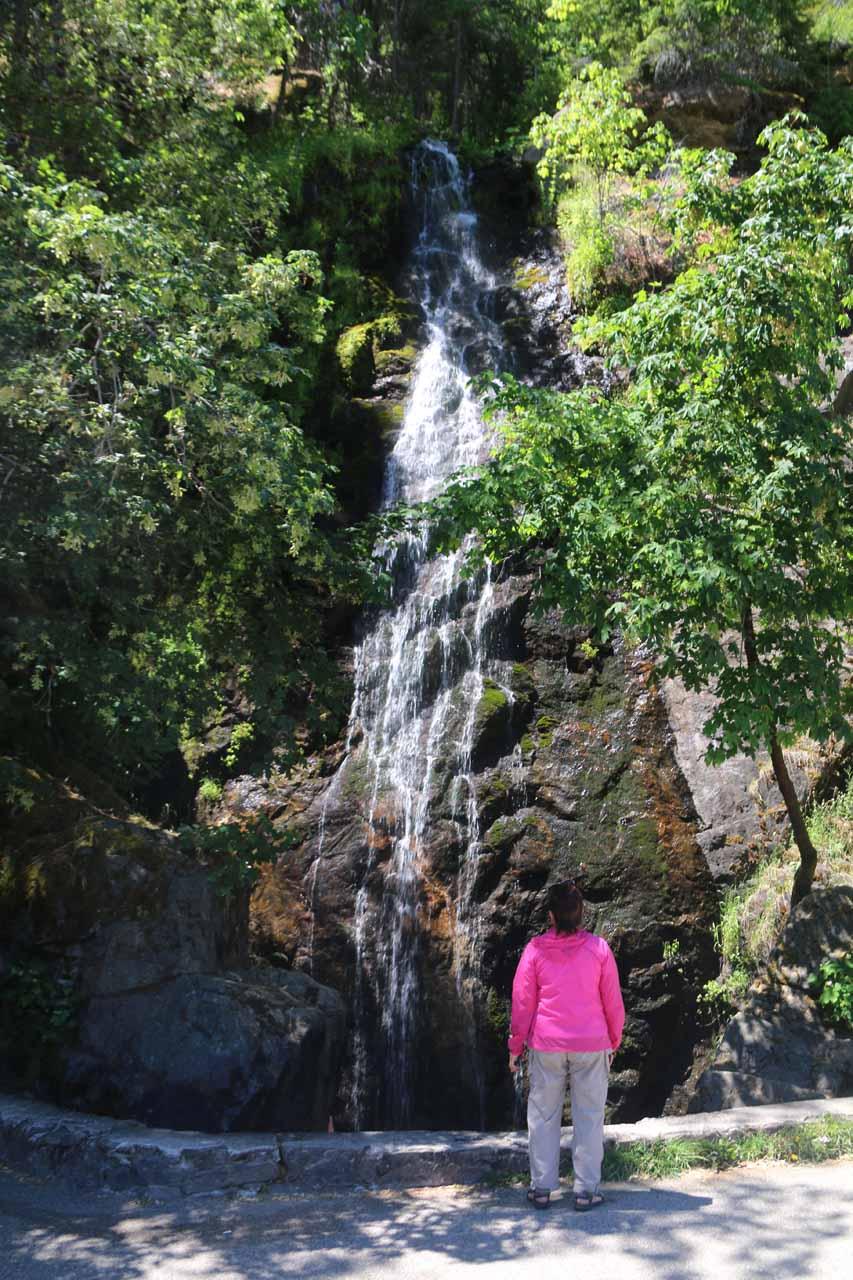 The Upper 2/3rds of Bridal Veil Falls at Pollock Pines