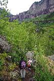 Bridal_Veil_Falls_Telluride_043_07222020 - The Bridal Veil Creek Trail involved hiking between lots of trees and large boulders while also being on a narrow single-track path with some undulations