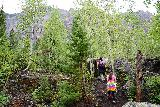 Bridal_Veil_Falls_Telluride_065_07222020 - The Bridal Veil Creek Trail generally went uphill so it was quite taxing on the day we did this hike because we didn't allow ourselves enough time to get acclimated to the high altitude