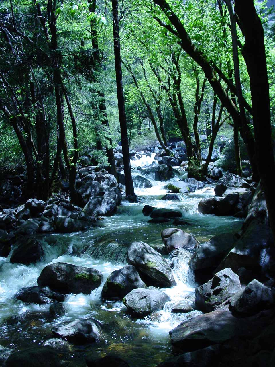 Bridalveil Creek en route to the base of the waterfall