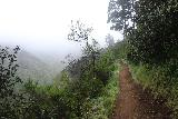 Brooks_Falls_034_04202019 - The Brooks Creek Trail hugging the mountain slope as it was ascending higher into the low clouds and fog en route to the Brooks Falls Lookout