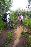 Bruarfoss_037_08062021 - Another one of the muddy spots along a narrower part of the Brúarfoss hike