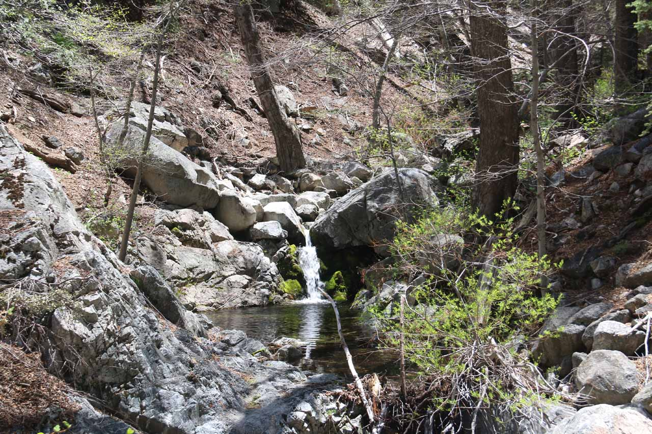 This was another one of the small waterfalls I encountered within Buckhorn Creek