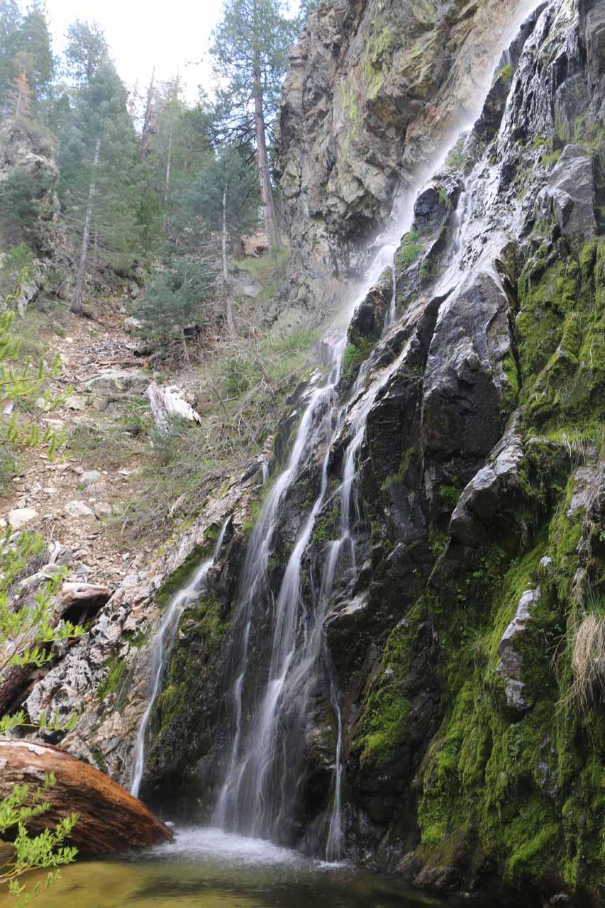 Buckhorn Falls