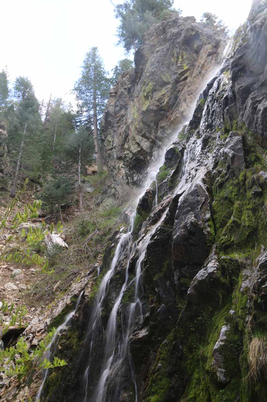 Looking up towards the top of Buckhorn Falls from near its base