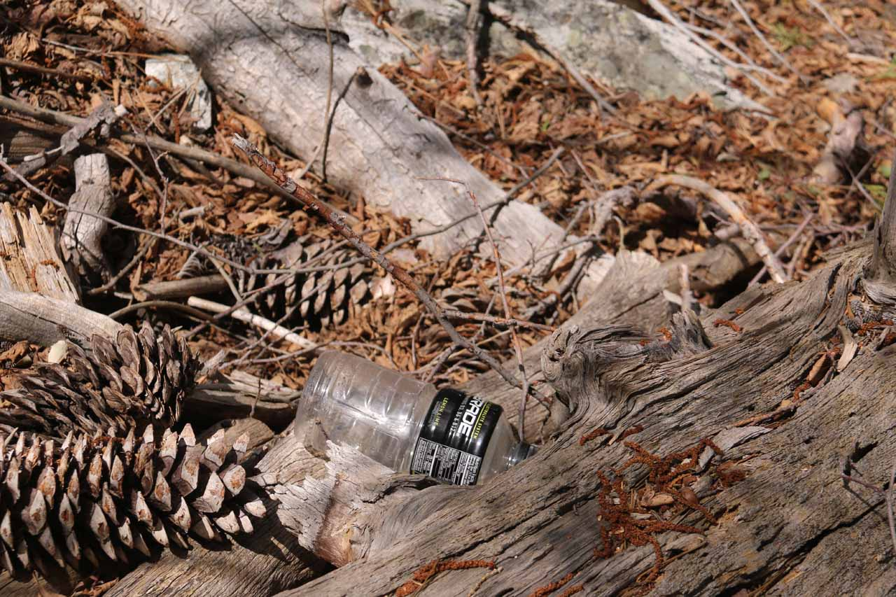This plastic bottle was an example of some of the litter I found while doing this scramble