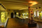 Burg_Eltz_087_06172018 - Inside the treasury and armory of the Burg Eltz