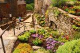 Burg_Eltz_126_06182018 - Flowers in a little garden fronting the base of the vertical part of Burg Eltz
