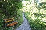 Burgbach_Waterfall_021_06222018 - On the narrower trail to the Burgbach Waterfall as it passed by this rest bench