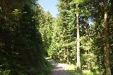 Burgbach_Waterfall_087_06222018 - Heading back from the Burgbach Waterfall and on my way to return to the Burgbachstrasse
