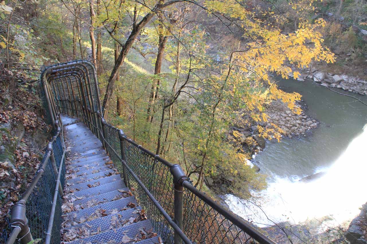 Stairs with canopy either protecting it from slippery fallen leaves or from larger rocks