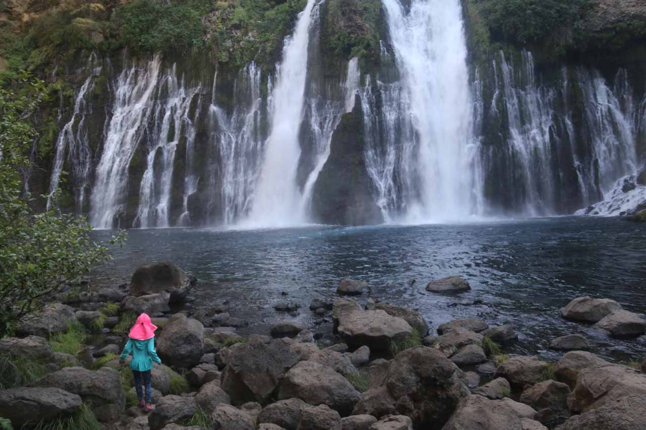 Tahia enjoying the late afternoon spray from Burney Falls on a very hot afternoon