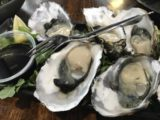 Burnie_015_iPhone_12012017 - Enjoying some fresh Tasmanian oysters at Fish Frenzy in Burnie