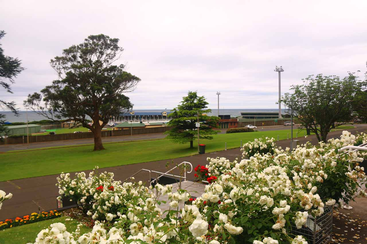 Looking towards the Bass Highway over white and red roses from the war memorial at the far north end of Burnie Park