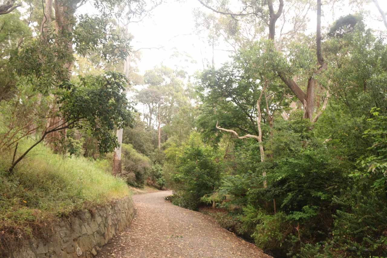 As we left the picnic area and playground behind, we were suddenly in a lush area almost making us forget we were in a city