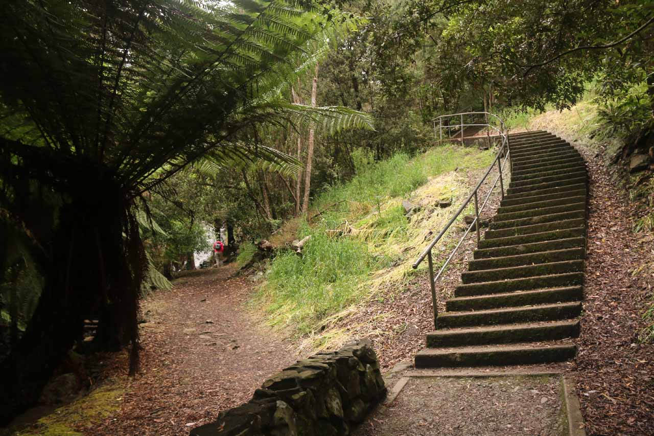The walking path then had to climb these steps. Note the path to the left of the steps led to a dead-end at an intermediate waterfall
