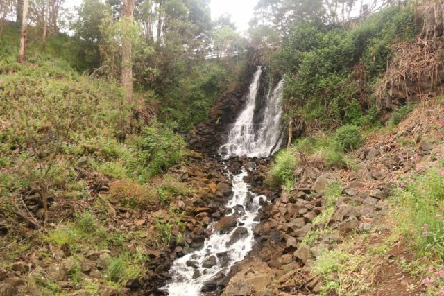 Burnie_Park_17_051_12012017 - Oldaker Falls
