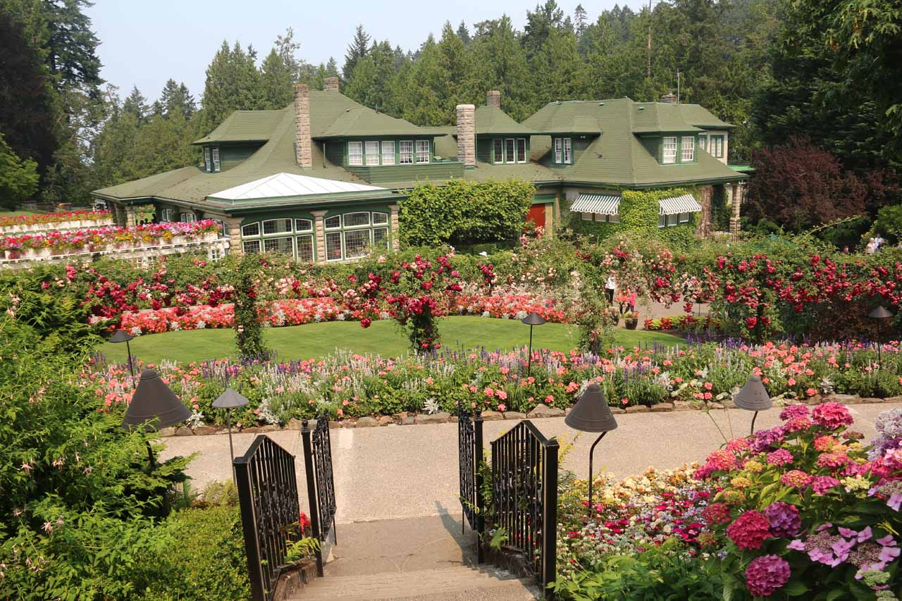 The famous Butchart Gardens was about 73km northeast of Sandcut Beach, which gives you an idea of how far you have to drive from Vancouver Island's most popular attraction for an escape like this