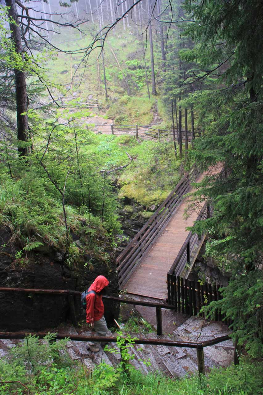 Julie approaching the bridge before the third waterfall as we were heading back to the trailhead