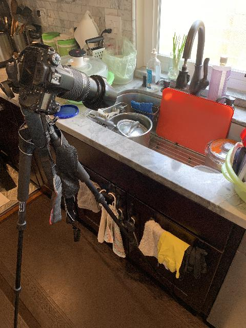 The camera and tripod setup just to take that picture of water falling from a faucet